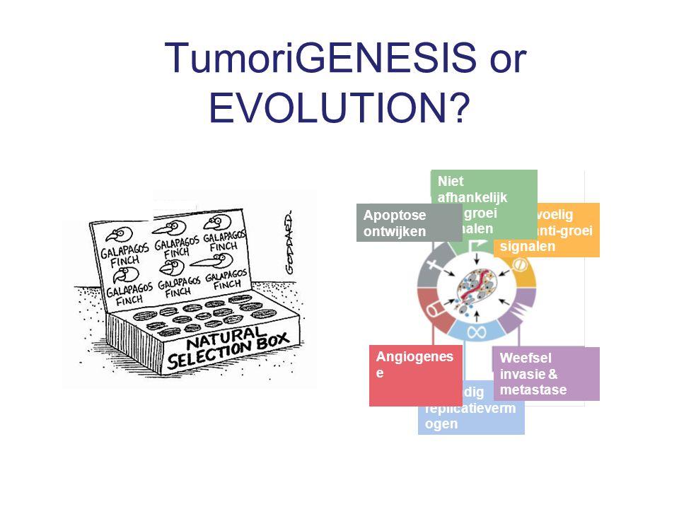 TumoriGENESIS or EVOLUTION.