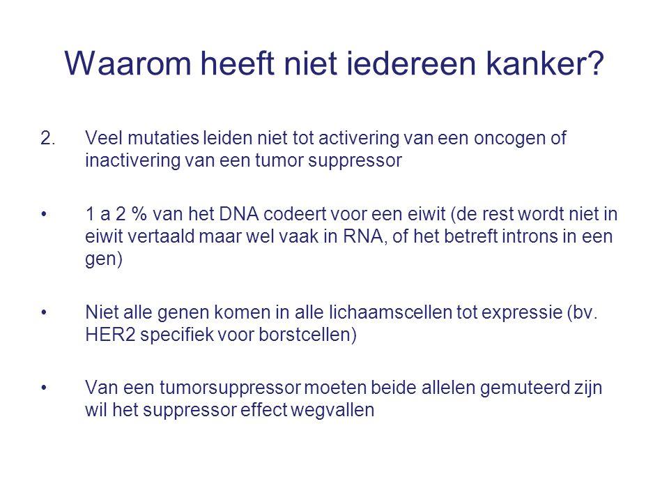 2. Veel mutaties leiden niet tot activering van een oncogen of inactivering van een tumor suppressor 1 a 2 % van het DNA codeert voor een eiwit (de re