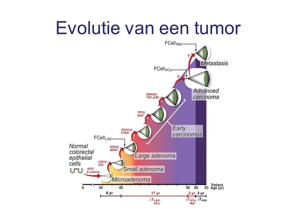 Evolutie van een tumor