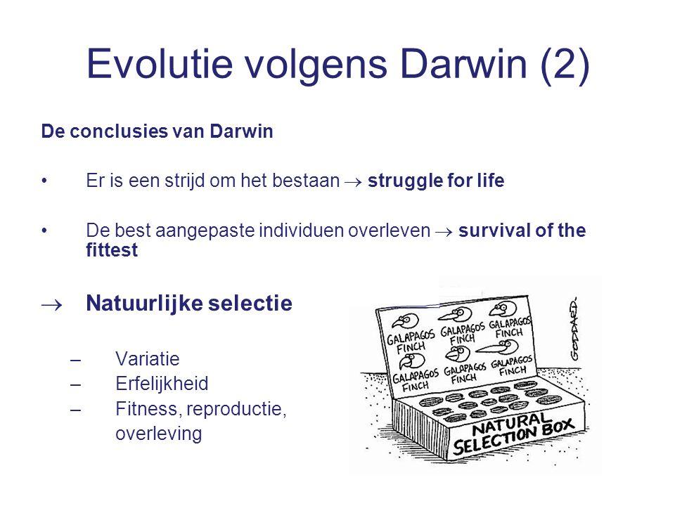 Evolutie volgens Darwin (2) De conclusies van Darwin Er is een strijd om het bestaan  struggle for life De best aangepaste individuen overleven  survival of the fittest  Natuurlijke selectie –Variatie –Erfelijkheid –Fitness, reproductie, overleving