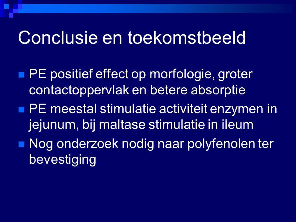 Conclusie en toekomstbeeld PE positief effect op morfologie, groter contactoppervlak en betere absorptie PE meestal stimulatie activiteit enzymen in j
