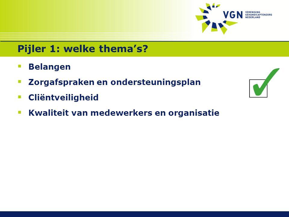 Pijler 1: welke thema's?  Belangen  Zorgafspraken en ondersteuningsplan  Cliëntveiligheid  Kwaliteit van medewerkers en organisatie