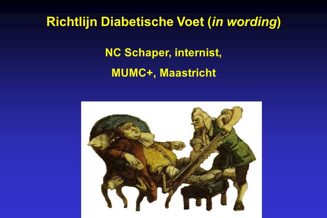 Richtlijn Diabetische Voet (in wording) NC Schaper, internist, MUMC+, Maastricht