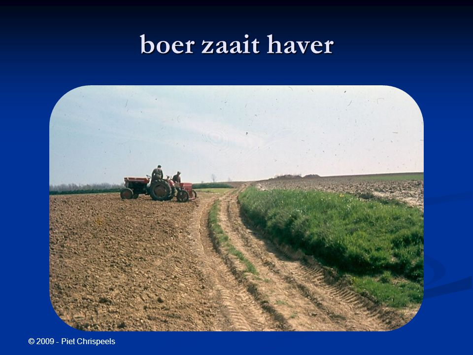 © 2009 - Piet Chrispeels boer zaait haver