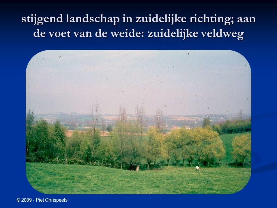 © 2009 - Piet Chrispeels stijgend landschap in zuidelijke richting; aan de voet van de weide: zuidelijke veldweg