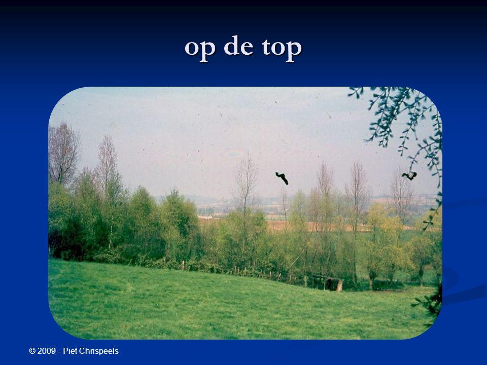 © 2009 - Piet Chrispeels op de top
