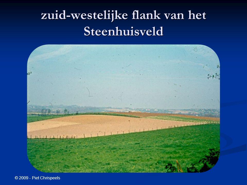 zuid-westelijke flank van het Steenhuisveld