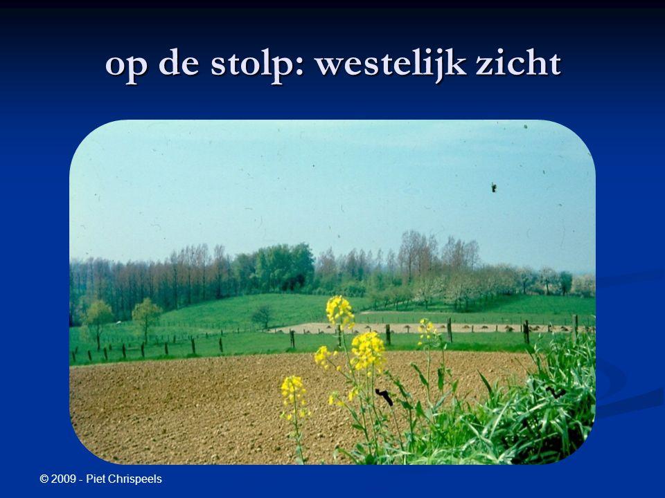 © 2009 - Piet Chrispeels op de stolp: westelijk zicht