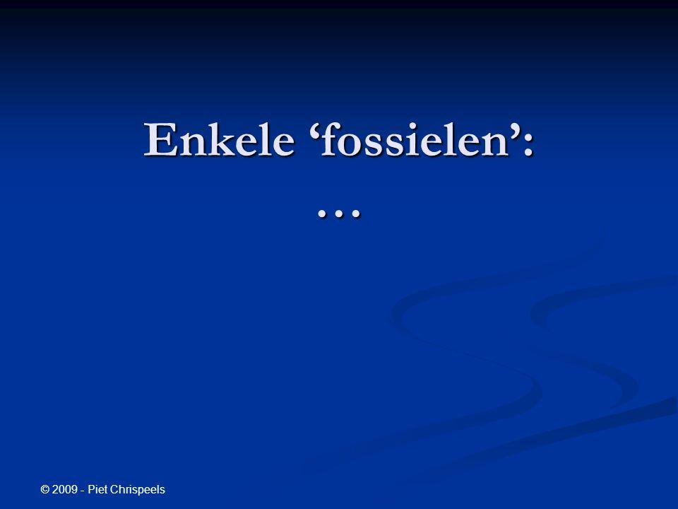 © 2009 - Piet Chrispeels Enkele 'fossielen': …