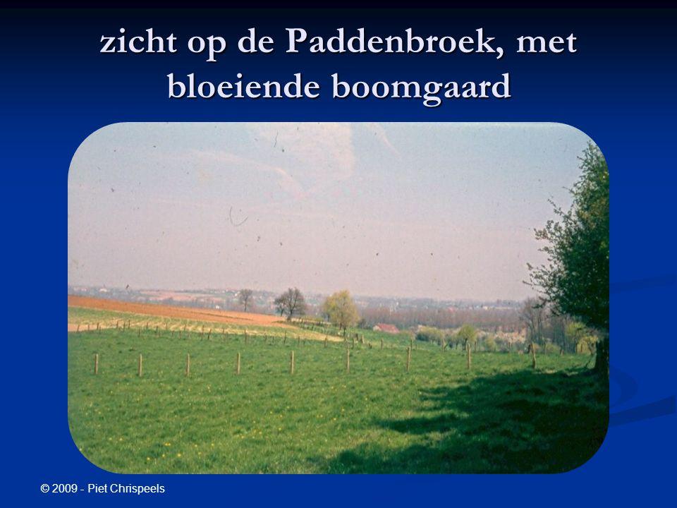 © 2009 - Piet Chrispeels zicht op de Paddenbroek, met bloeiende boomgaard