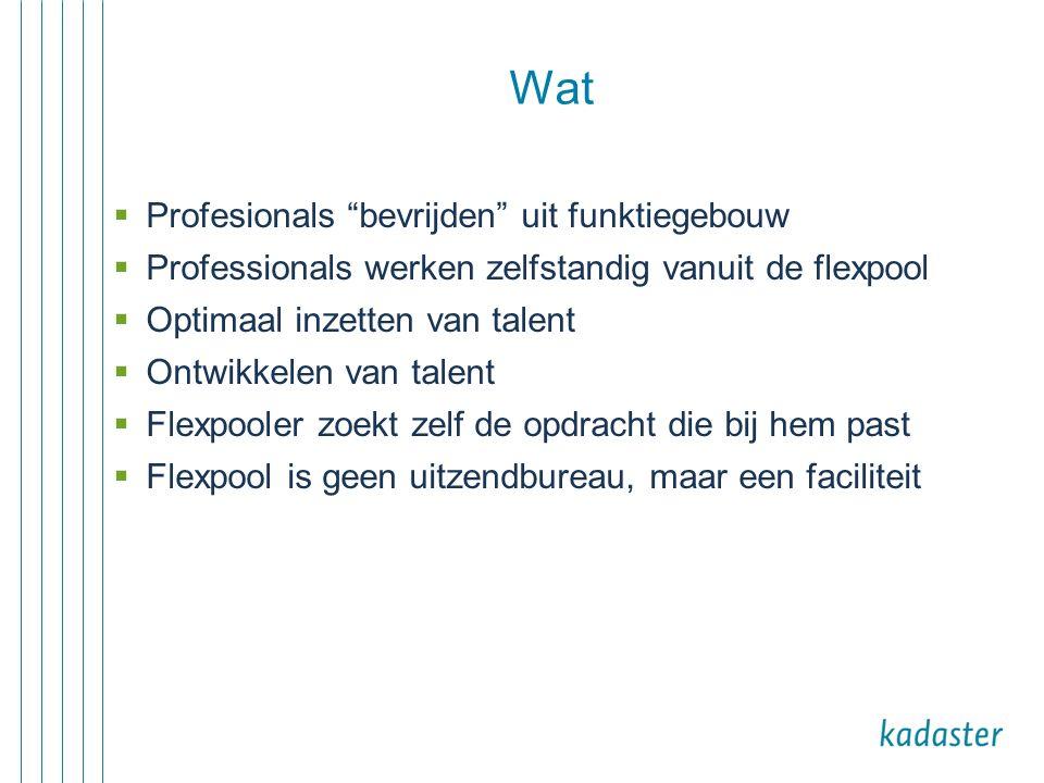 """ Profesionals """"bevrijden"""" uit funktiegebouw  Professionals werken zelfstandig vanuit de flexpool  Optimaal inzetten van talent  Ontwikkelen van ta"""