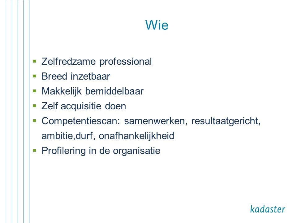 Wie  Zelfredzame professional  Breed inzetbaar  Makkelijk bemiddelbaar  Zelf acquisitie doen  Competentiescan: samenwerken, resultaatgericht, amb