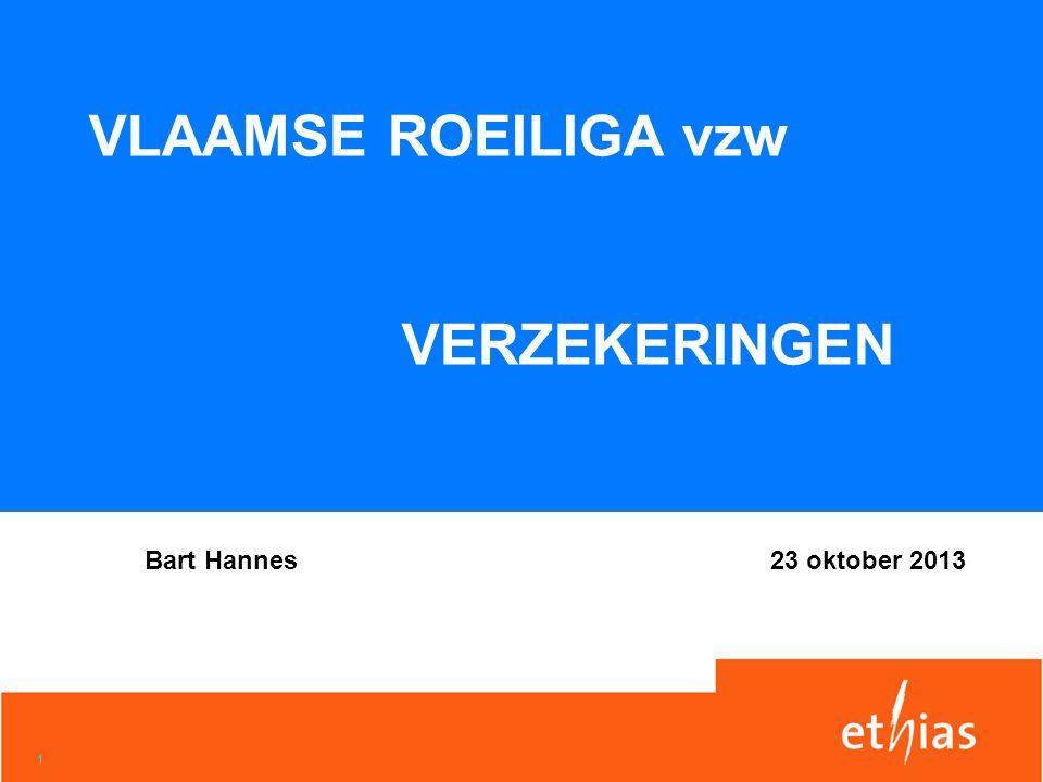 1 VLAAMSE ROEILIGA vzw VERZEKERINGEN Bart Hannes23 oktober 2013