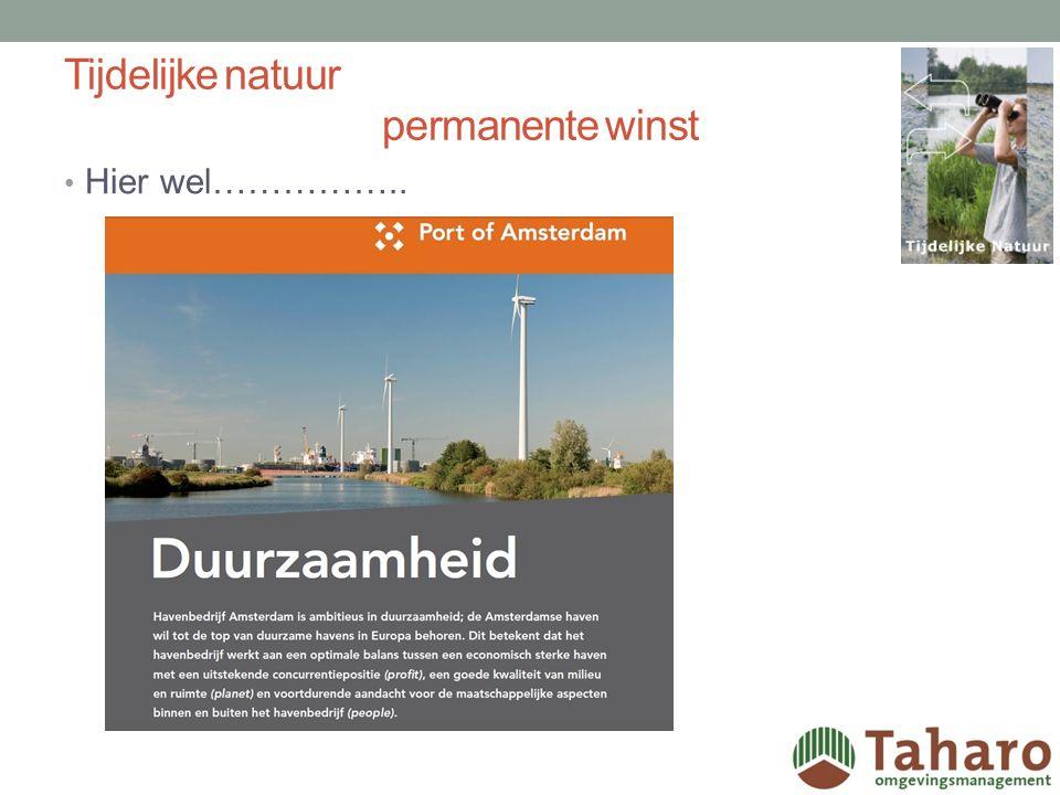 Tijdelijke natuur permanente winst Haven Amsterdam……..