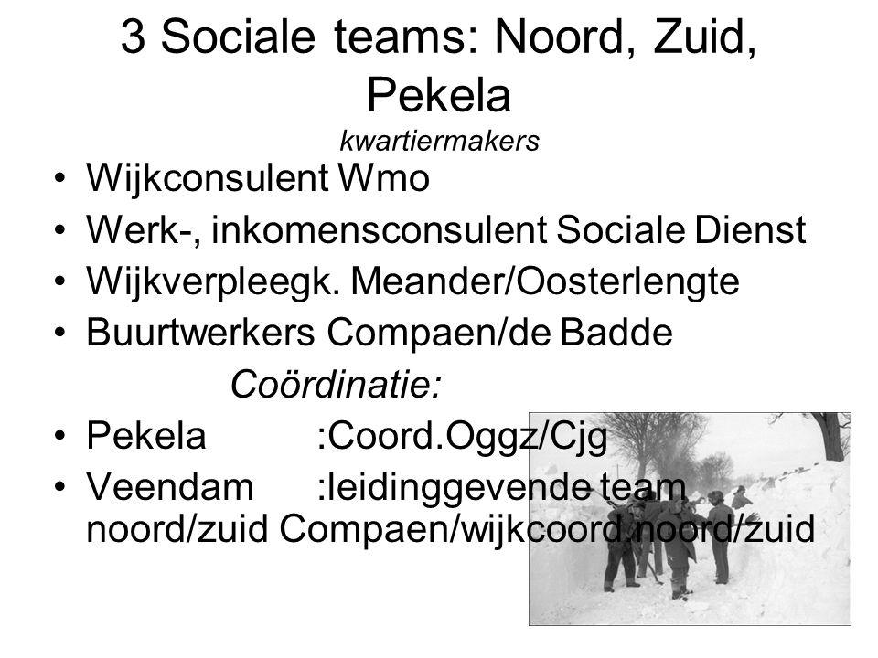3 Sociale teams: Noord, Zuid, Pekela kwartiermakers Wijkconsulent Wmo Werk-, inkomensconsulent Sociale Dienst Wijkverpleegk.