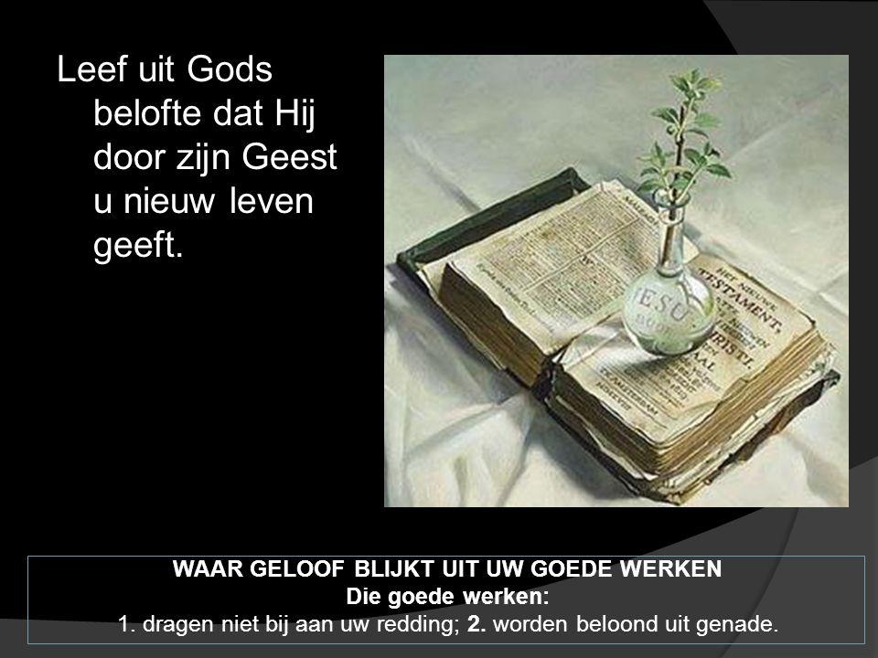 Leef uit Gods belofte dat Hij door zijn Geest u nieuw leven geeft.