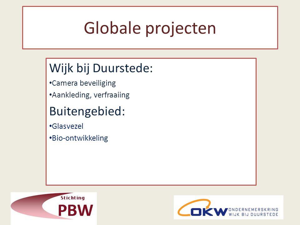 Globale projecten Wijk bij Duurstede: Camera beveiliging Aankleding, verfraaiing Buitengebied: Glasvezel Bio-ontwikkeling