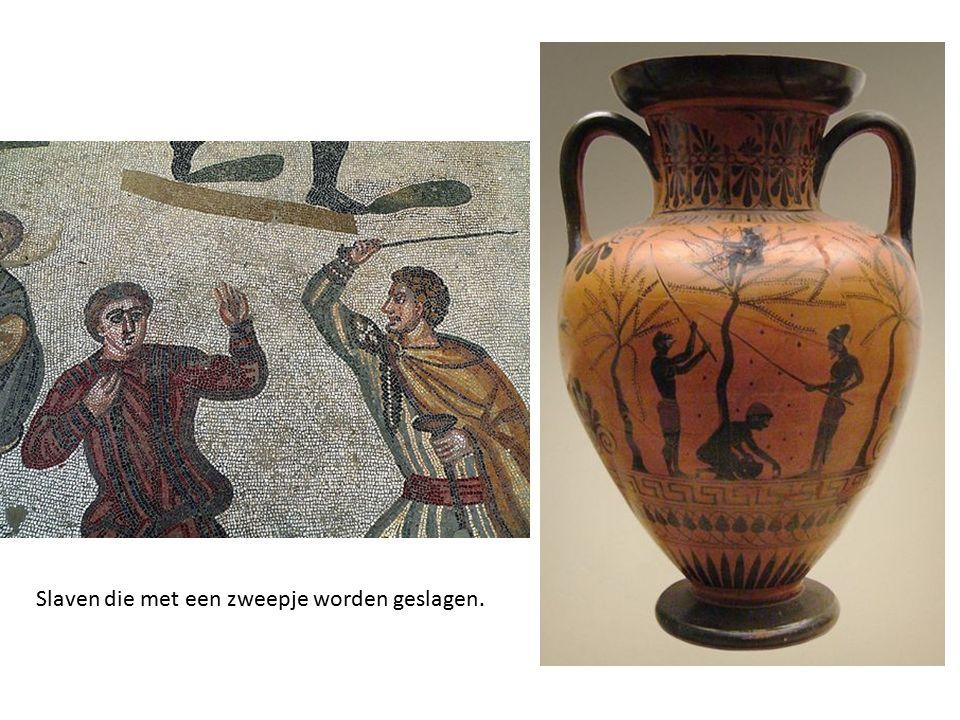 Bronnenopdracht slavernij 1.Beargumenteer PER BRON of de bron representatief is voor slavernij in de Oudheid, dat wil zeggen: is het waarschijnlijk dat deze bron een juist beeld geeft van de slavernij.