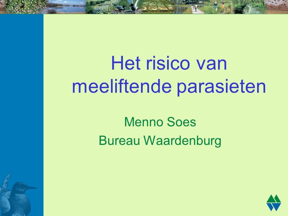 Het risico van meeliftende parasieten Menno Soes Bureau Waardenburg