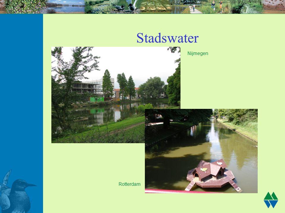 Stadswater Nijmegen Rotterdam