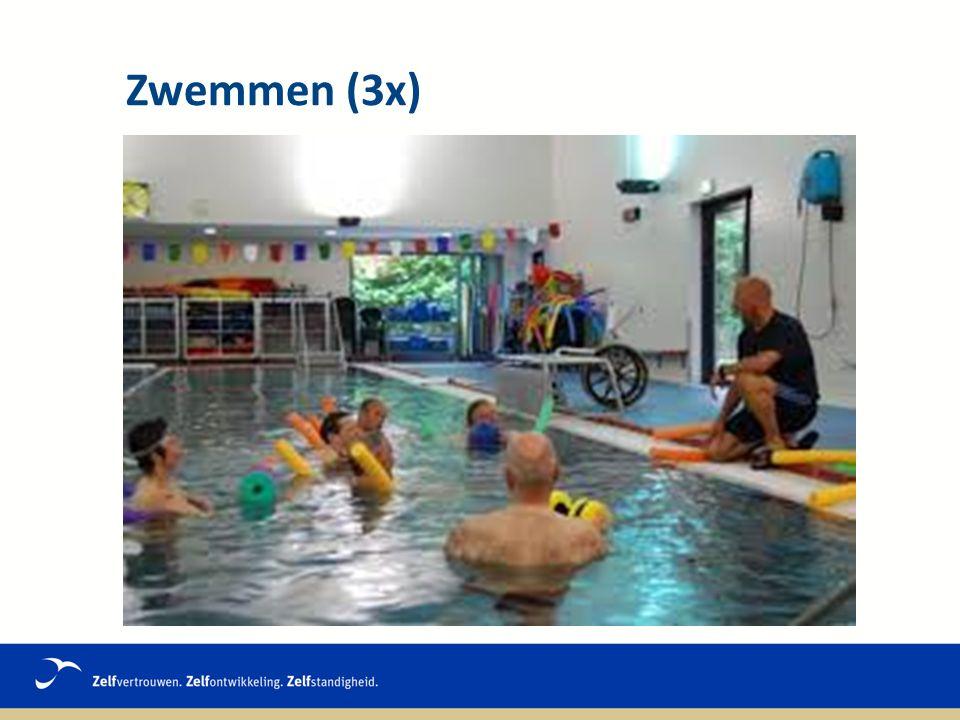 Zwemmen (3x)