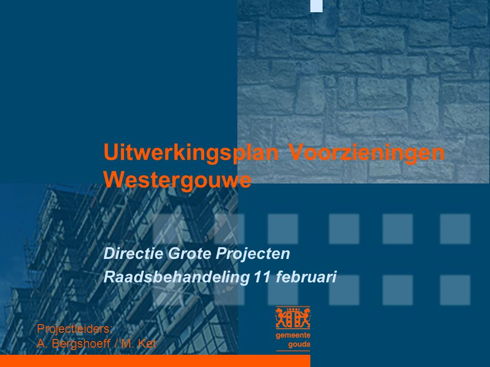 Uitwerkingsplan Voorzieningen Westergouwe Directie Grote Projecten Raadsbehandeling 11 februari Projectleiders: A. Bergshoeff / M. Ket