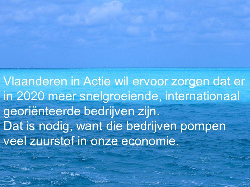 Vlaanderen in Actie wil ervoor zorgen dat er in 2020 meer snelgroeiende, internationaal georiënteerde bedrijven zijn. Dat is nodig, want die bedrijven