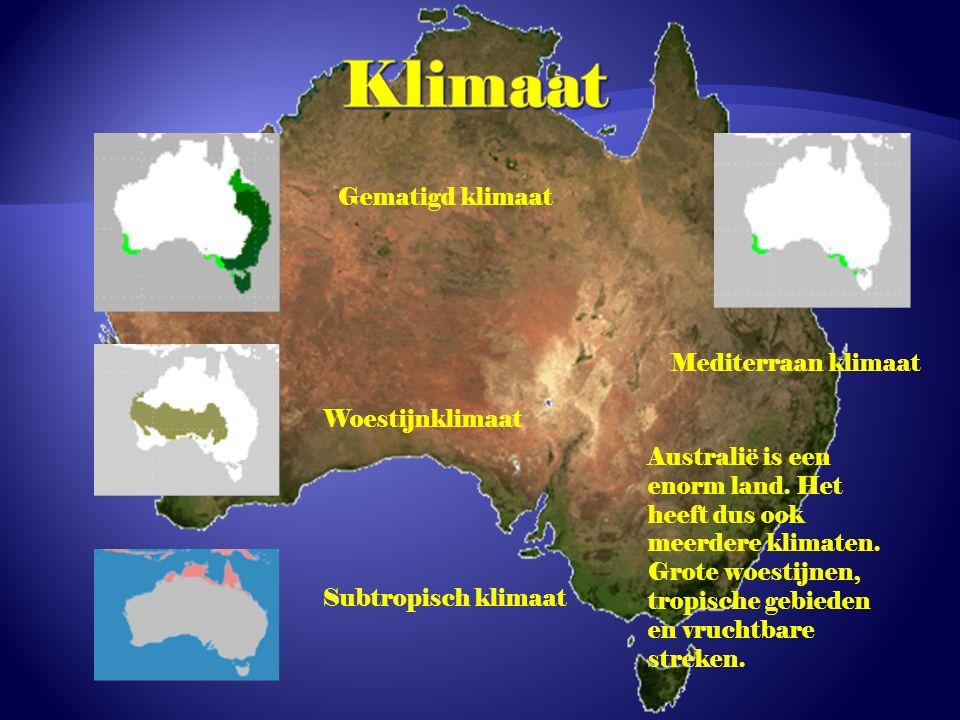 Gematigd klimaat Woestijnklimaat Subtropisch klimaat Mediterraan klimaat Australië is een enorm land.