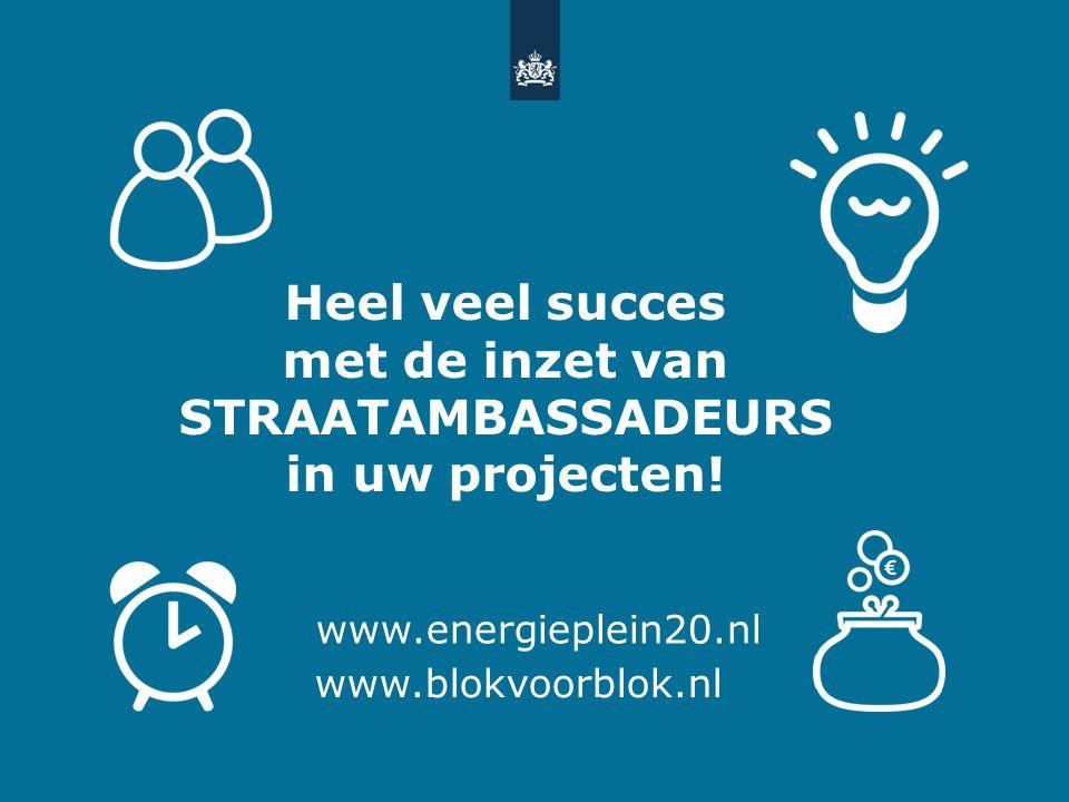 Heel veel succes met de inzet van STRAATAMBASSADEURS in uw projecten.