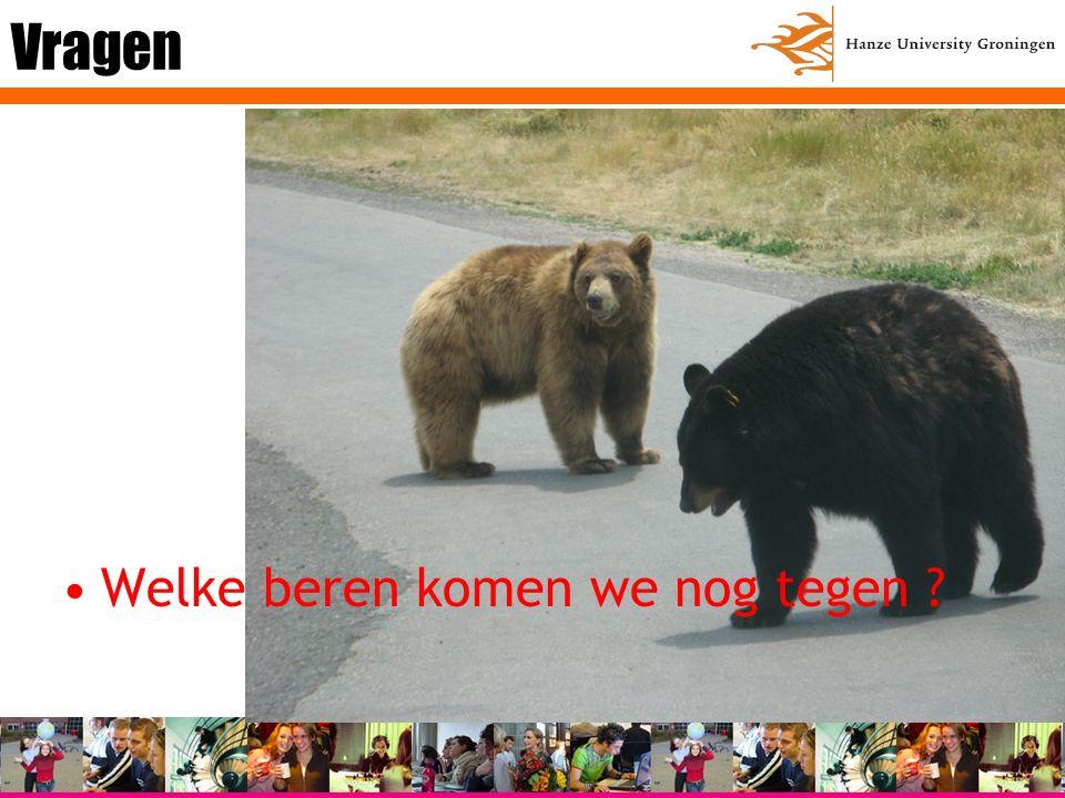 Vragen Welke beren komen we nog tegen
