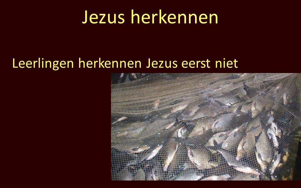 Jezus herkennen Leerlingen herkennen Jezus eerst niet