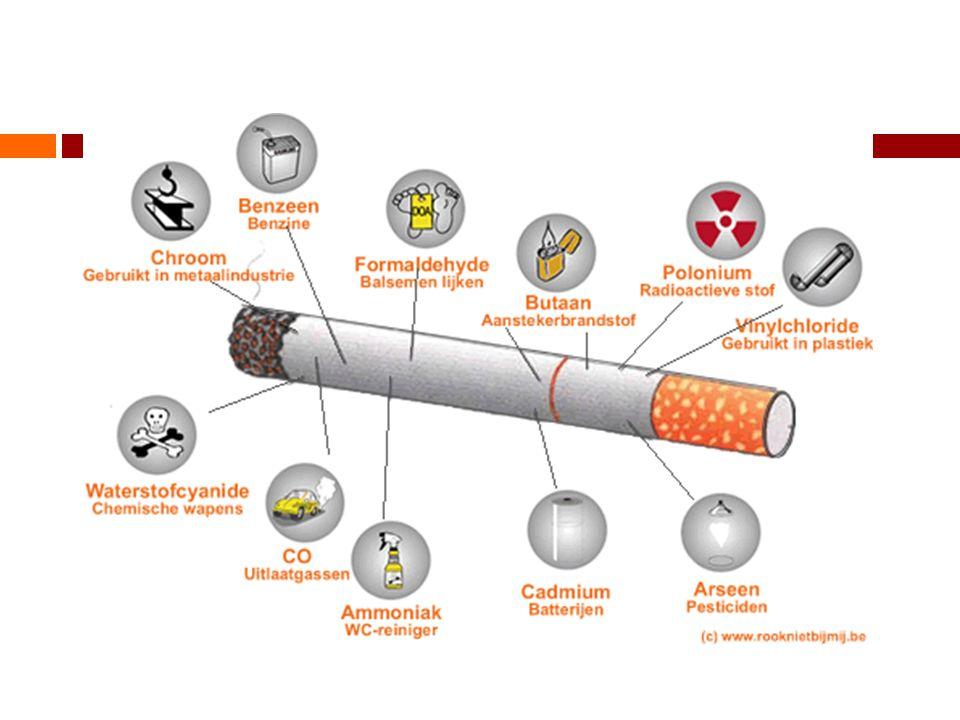 Aan roken gerelateerde ziekten  Longziekten  Hart- en vaatziekten  Verschillende uitingen van kanker  Endocriene aandoeningen  Gastro-intestinale aandoeningen  Mond-, en huidaandoeningen  Effecten op de voortplanting en zwangerschap  Overige aandoeningen  Risico's van meeroken  Psychiatrische co-morbiditeit / andere verslavingen  Invloed roken op operatie risico en chemotherapie Bron: Knol, Hilvering, Wagener en Willemsen:Tabaksgebruik, gevolgen en bestrijding.