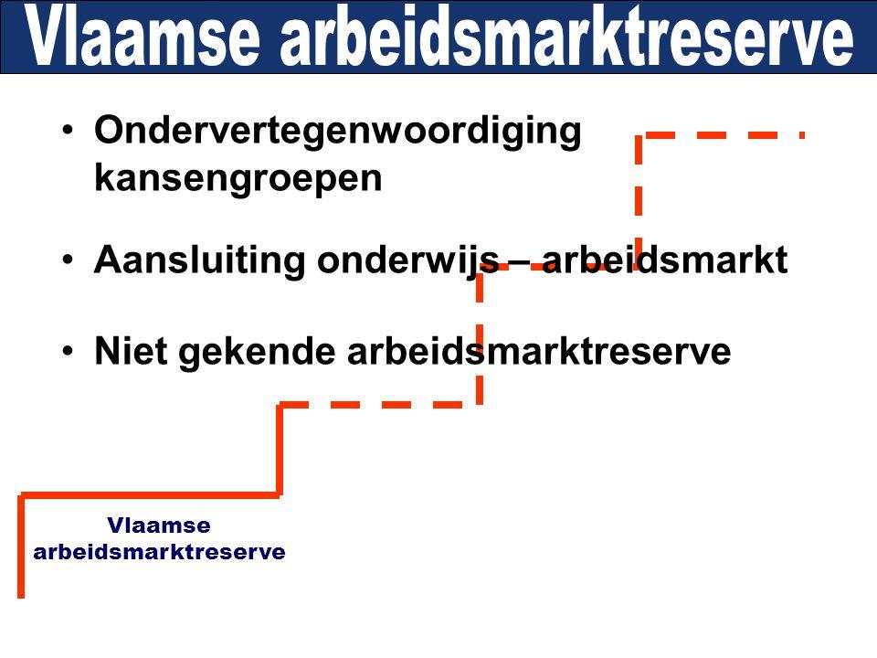 Ondervertegenwoordiging kansengroepen Aansluiting onderwijs – arbeidsmarkt Niet gekende arbeidsmarktreserve Vlaamse arbeidsmarktreserve