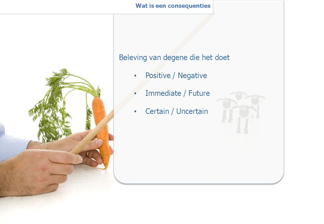 12 Beleving van degene die het doet Positive / Negative Immediate / Future Certain / Uncertain W Wat is een consequenties