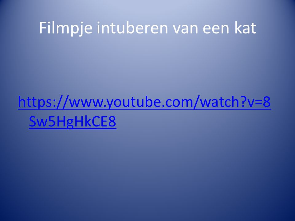 Filmpje intuberen van een kat https://www.youtube.com/watch v=8 Sw5HgHkCE8