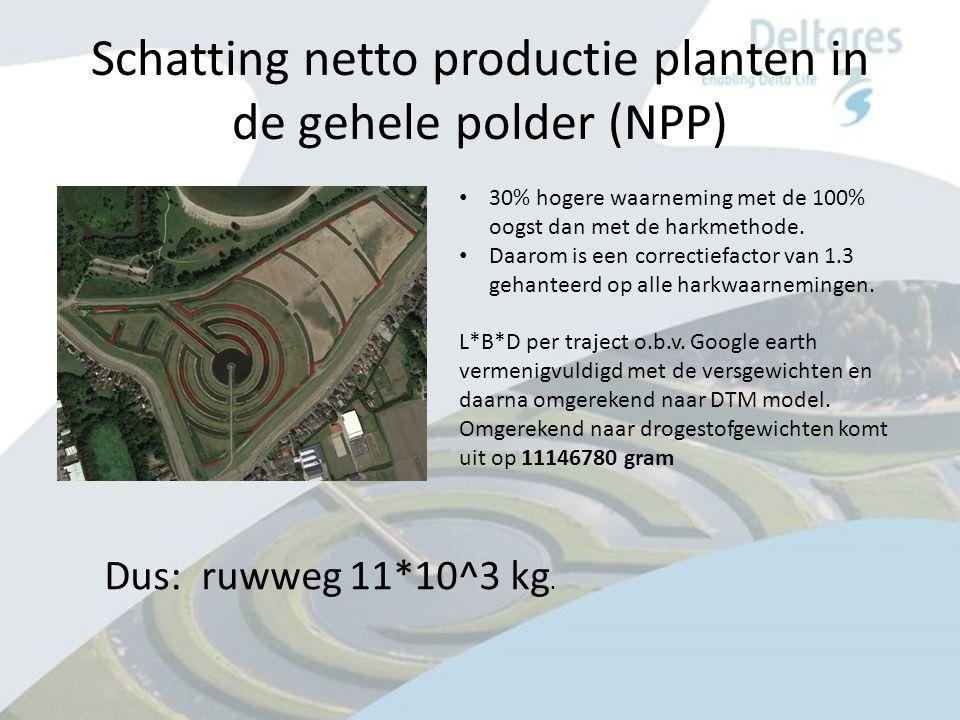 Schatting netto productie planten in de gehele polder (NPP) Dus: ruwweg 11*10^3 kg.