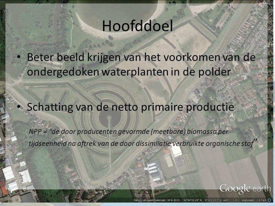 Hoofddoel Beter beeld krijgen van het voorkomen van de ondergedoken waterplanten in de polder Schatting van de netto primaire productie NPP = de door producenten gevormde (meetbare) biomassa per tijdseenheid na aftrek van de door dissimilatie verbruikte organische stof