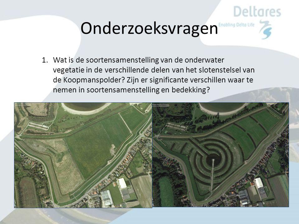 Onderzoeksvragen 1.Wat is de soortensamenstelling van de onderwater vegetatie in de verschillende delen van het slotenstelsel van de Koopmanspolder.