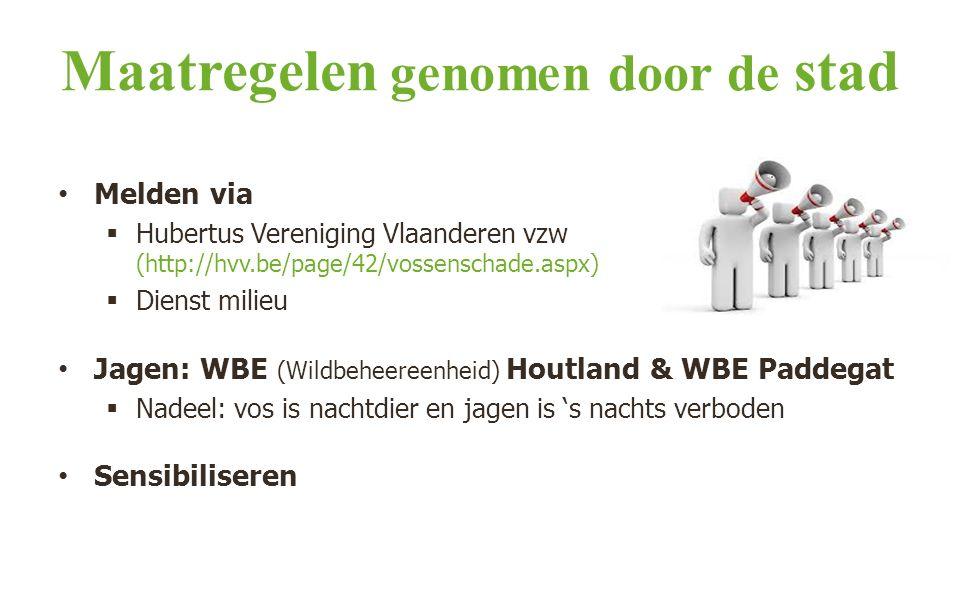 Maatregelen genomen door de stad Melden via  Hubertus Vereniging Vlaanderen vzw (http://hvv.be/page/42/vossenschade.aspx)  Dienst milieu Jagen: WBE (Wildbeheereenheid) Houtland & WBE Paddegat  Nadeel: vos is nachtdier en jagen is 's nachts verboden Sensibiliseren