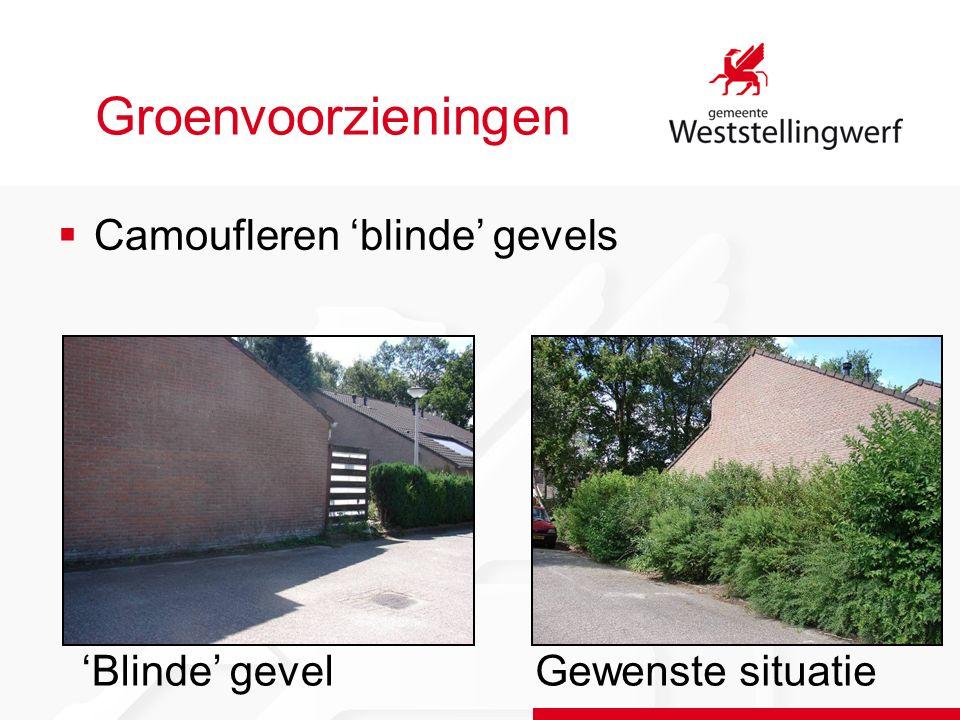 Groenvoorzieningen  Camoufleren 'blinde' gevels Gewenste situatie'Blinde' gevel