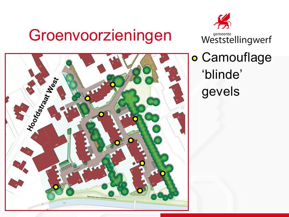 Groenvoorzieningen Camouflage 'blinde' gevels Hoofdstraat West