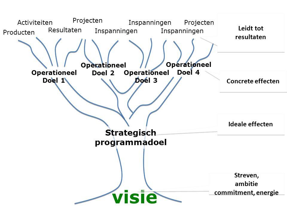 Strategisch programmadoel visie Operationeel Doel 1 Producten Inspanningen Projecten Inspanningen Resultaten Activiteiten Projecten Operationeel Doel