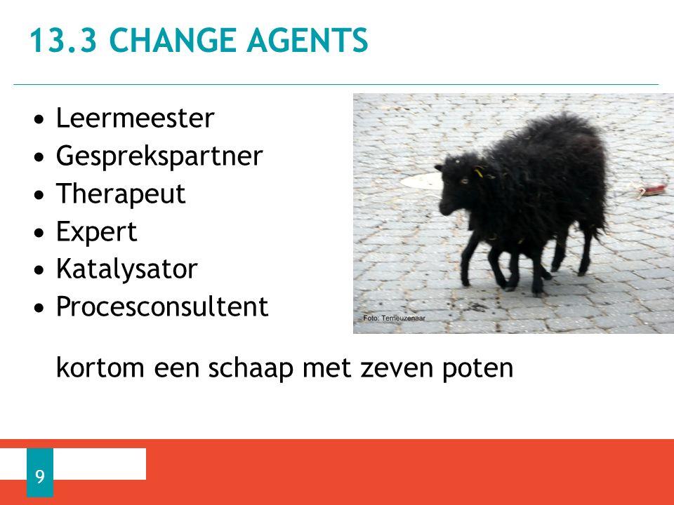 Leermeester Gesprekspartner Therapeut Expert Katalysator Procesconsultent kortom een schaap met zeven poten 13.3 CHANGE AGENTS 9