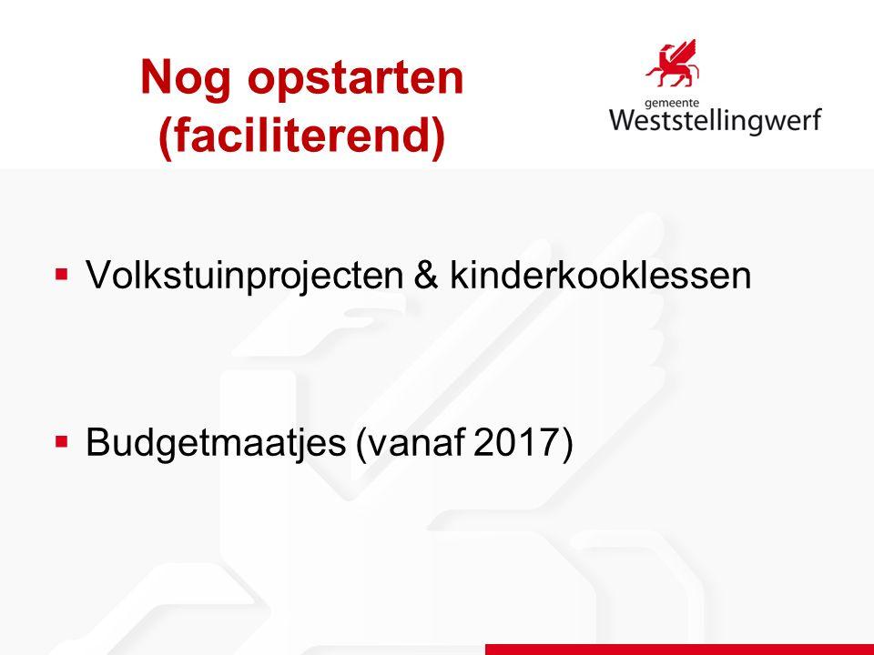 Nog opstarten (faciliterend)  Volkstuinprojecten & kinderkooklessen  Budgetmaatjes (vanaf 2017)