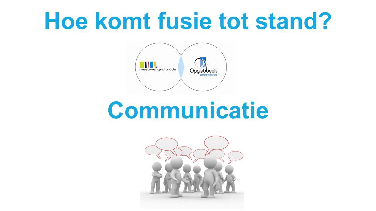 Onderzoek naar een eventuele fusie www.fusiemgo.be Kansen van fusie Problemen