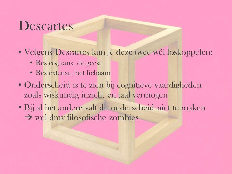 Descartes Volgens Descartes kun je deze twee wél loskoppelen: Res cogitans, de geest Res extensa, het lichaam Onderscheid is te zien bij cognitieve va