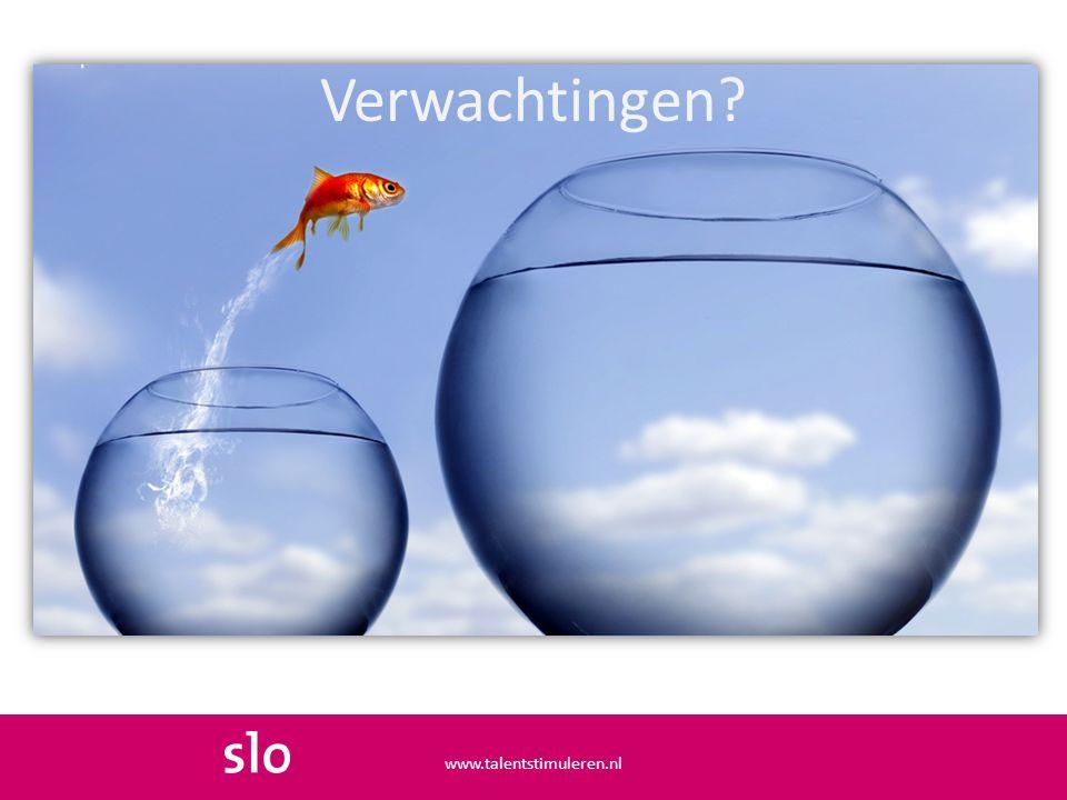 Verwachtingen? www.talentstimuleren.nl