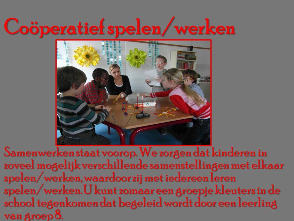 Coöperatief spelen/werken Samenwerken staat voorop.