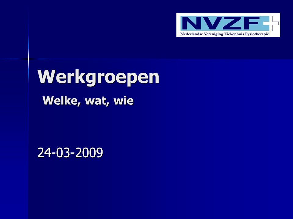 Werkgroepen Welke, wat, wie 24-03-2009