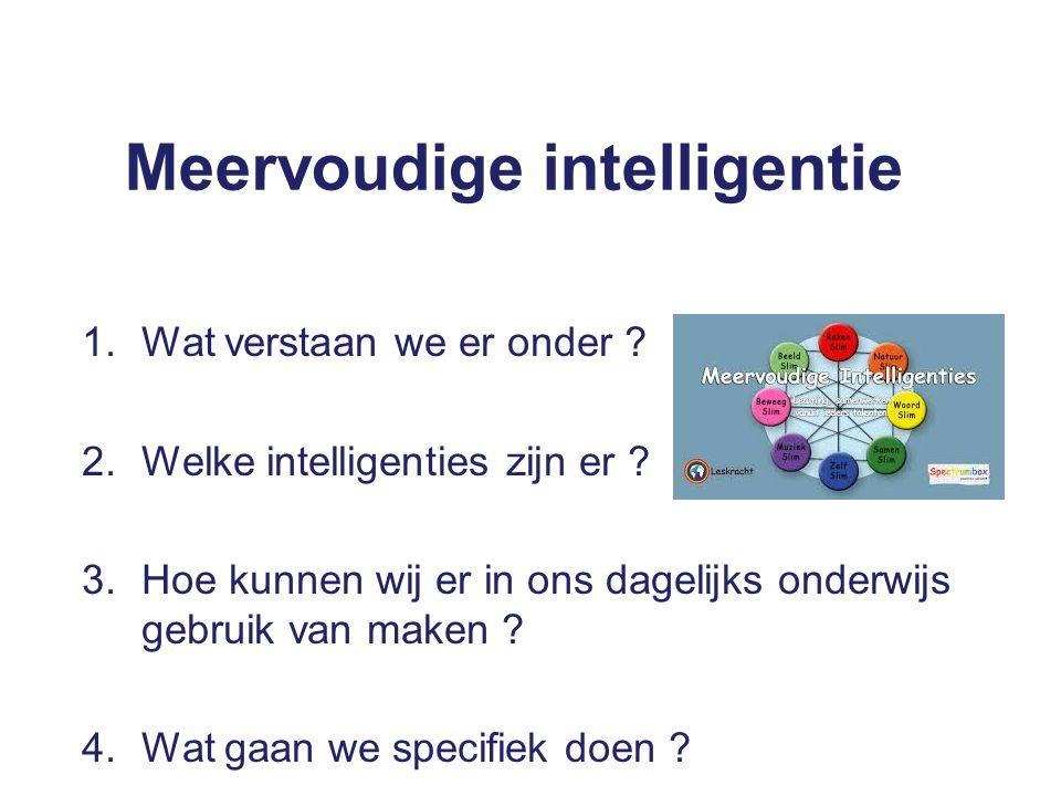 Meervoudige intelligentie 1.Wat verstaan we er onder .